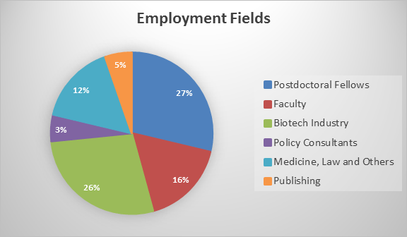 Employment Fields as pie diagram